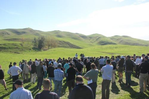 FOY field day Horonui stop2