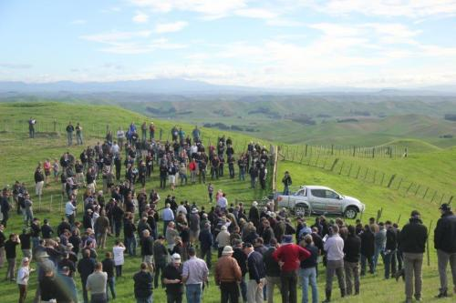 FOY field day Horonui